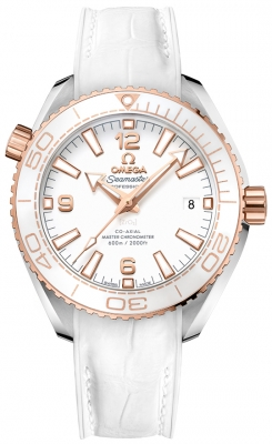 Omega Planet Ocean 600m Co-Axial Master Chronometer 39.5mm 215.23.40.20.04.001