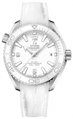 Omega Planet Ocean 600m Co-Axial Master Chronometer 39.5mm 215.33.40.20.04.001