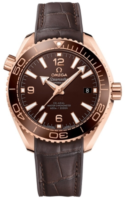 Omega Planet Ocean 600m Co-Axial Master Chronometer 39.5mm 215.63.40.20.13.001