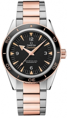 Omega Seamaster 300 Master Co-Axial 41mm 233.20.41.21.01.001