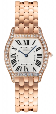 Cartier Tortue Medium wa501012