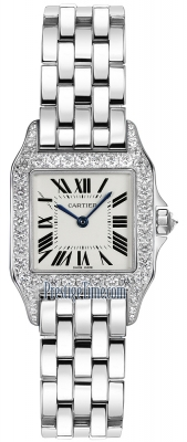 Cartier Santos Demoiselle - Small wf9003y8