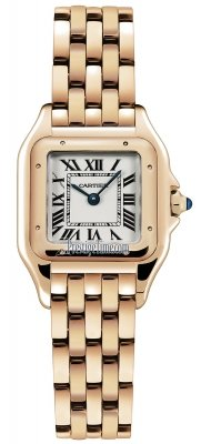 Cartier Panthere de Cartier Small wgpn0006