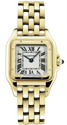 Cartier Panthere de Cartier Medium wgpn0009